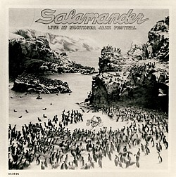 Salamanders first LP